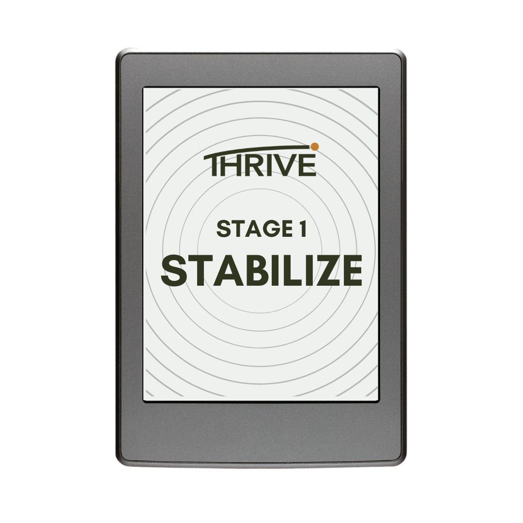 https://sigunlimited.com/wp-content/uploads/2020/11/Stabilize-1.png